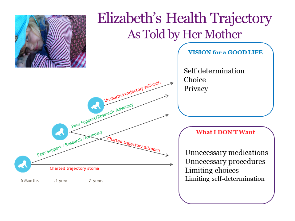 Graphic: Screenshot of Elizabeth's health trajectory